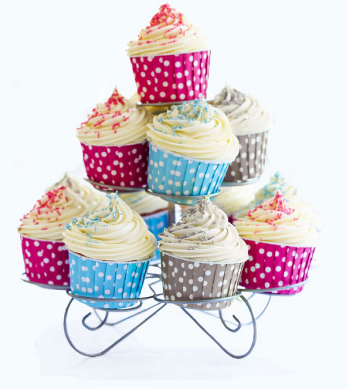 cupcaketray_blank